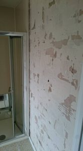 bathroom-refit-3-copy